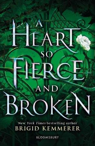 Heart So Fierce and Broken Brigid Kemmerer Book Cover