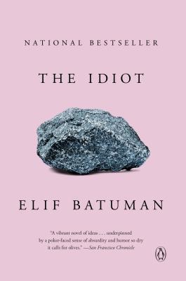 The Idiot Elif Batuman Book Cover