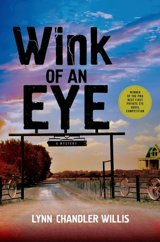 Wink of an Eye Lynn Chandler-Willis Book Cover