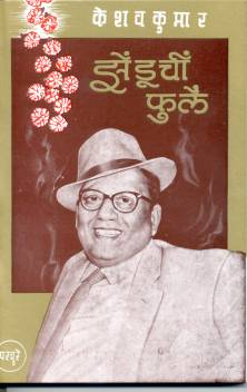 Zenduchi Phule  Keshav Kumar Book Cover